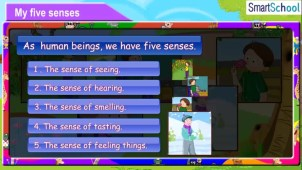 my_five_senses