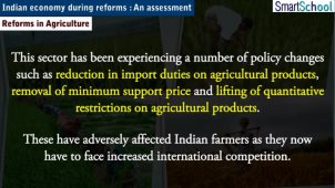 indian_economy_during_reforms