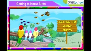 getting_to_know_birds