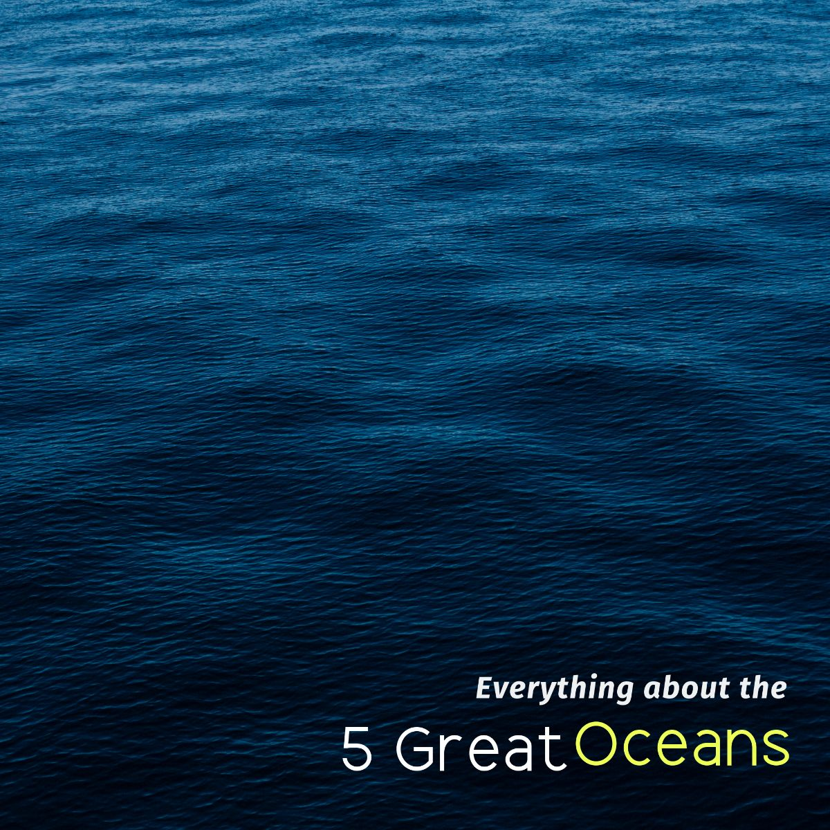 Everything about the 5 Great Oceans on the Earth