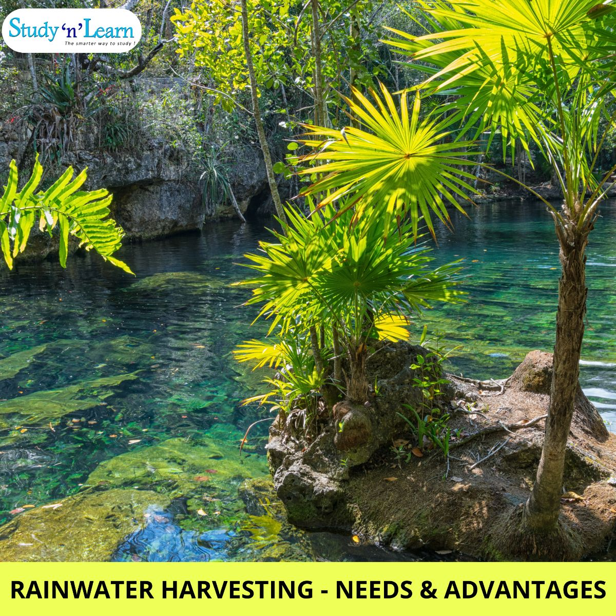 Rainwater Harvesting in India- Needs & Advantages!