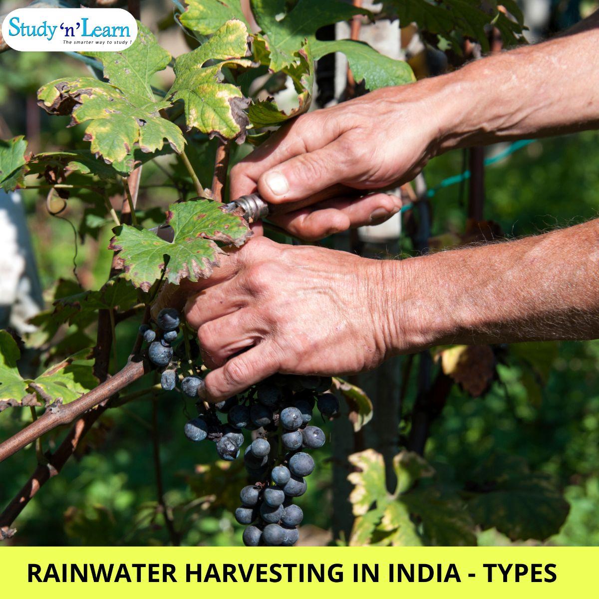 Rainwater Harvesting- Types