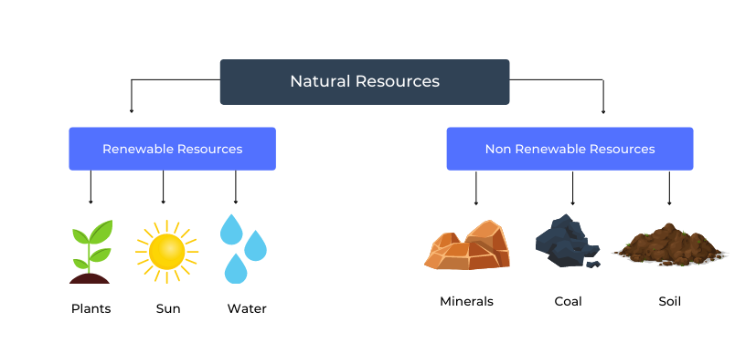 Natural Resources and Types of Natural Resources
